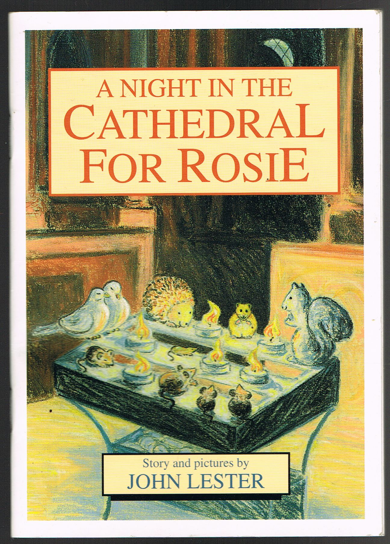 Image for A Night in the Cathedral For Rosie
