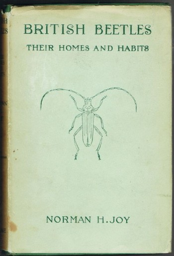 Image for British Beetles: Their Homes and Habits