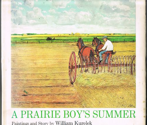 Image for A Prairie Boy's Summer