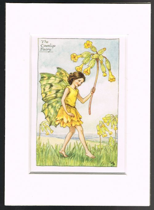Image for The Cowslip Fairy (Mounted Book Plate from 'Flower Fairies of the Spring')