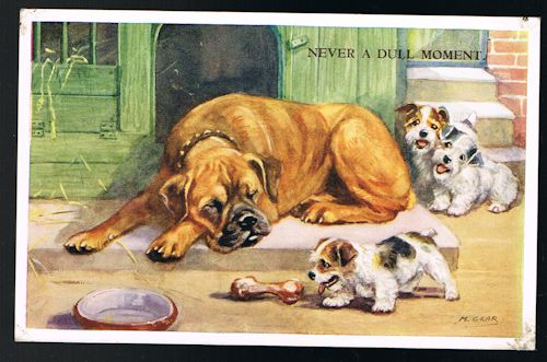 Image for Never a Dull Moment: Boxer & Terrier Puppies Postcard