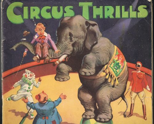 Image for Circus Thrills