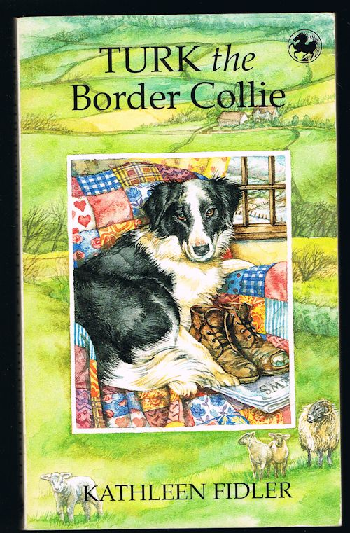 Image for Turk the Border Collie