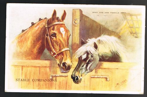 Image for Stable Companions Horse & Pony Postcard