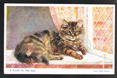 A Place in the Sun - Brown Tabby Persian Cat Postcard