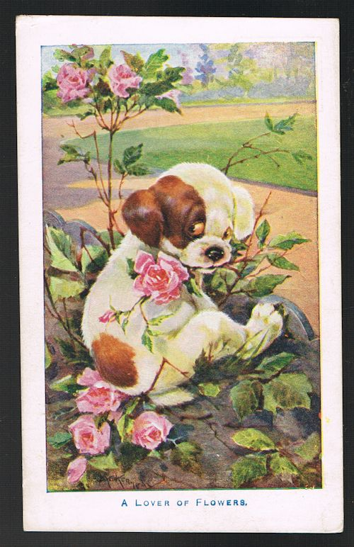 Image for A Lover of Flowers Dog in Roses Postcard