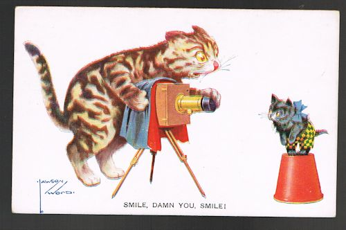 Image for Smile Damn You Cat Photographer Postcard