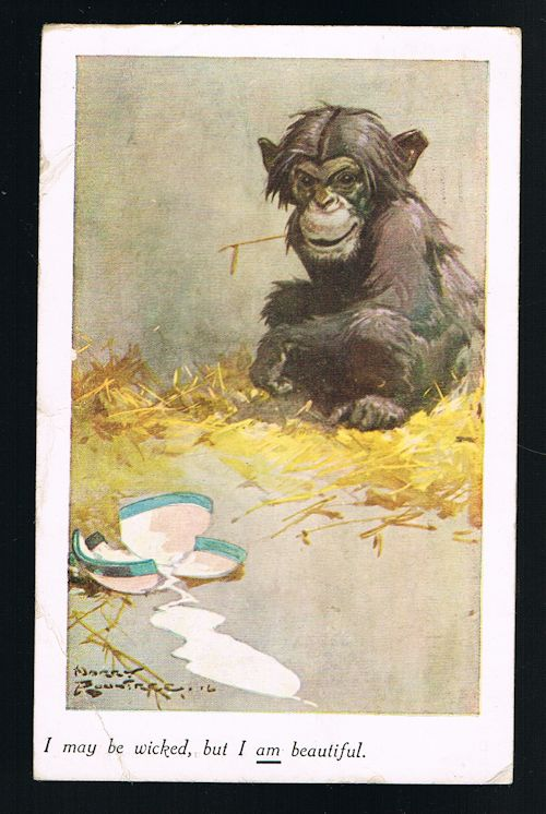Image for Wicked But Beautiful Chimp Monkey Postcard