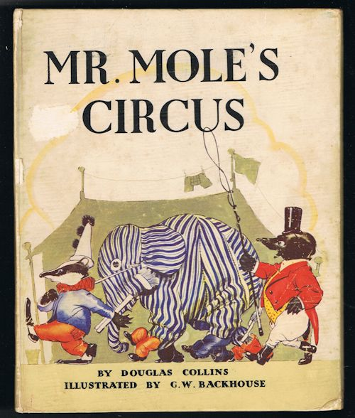 Image for Mr Mole's Circus