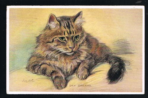 Image for Day Dreams Cat Postcard