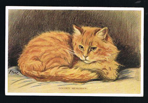 Golden Memories Cat Postcard