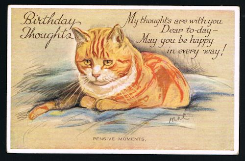 Image for Pensive Moments Birthday Cat Postcard