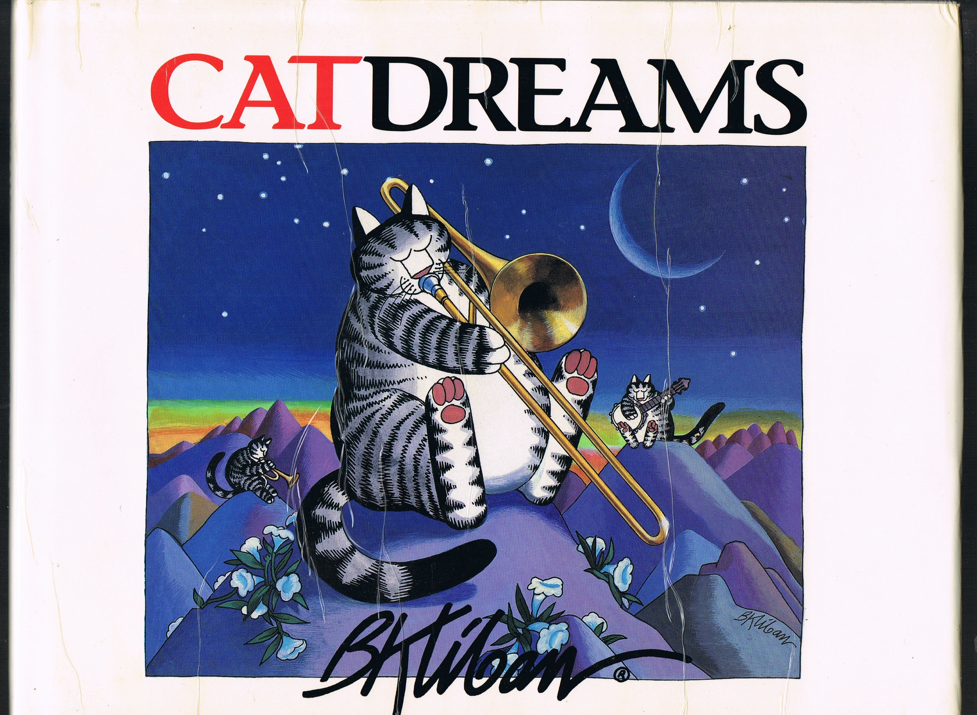 Image for CatDreams