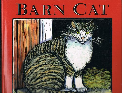 Image for Barn Cat