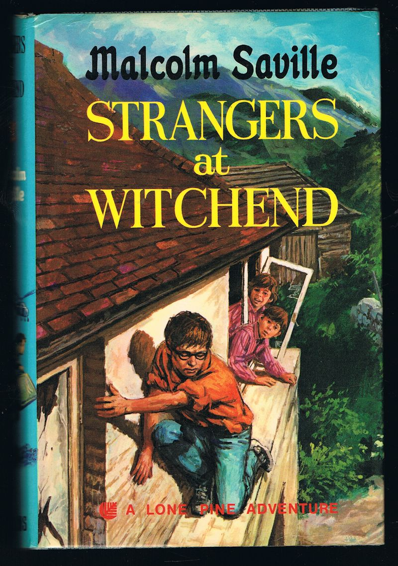 Image for Strangers at Witchend